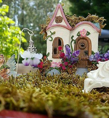 Miniature Woodland Fairy Garden House Terrarium Cottage + Fairy Lantern
