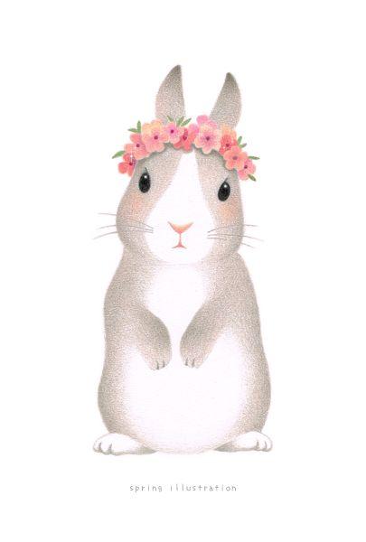 イラスト おしゃれうさぎさん illustration/drawing/rabbit