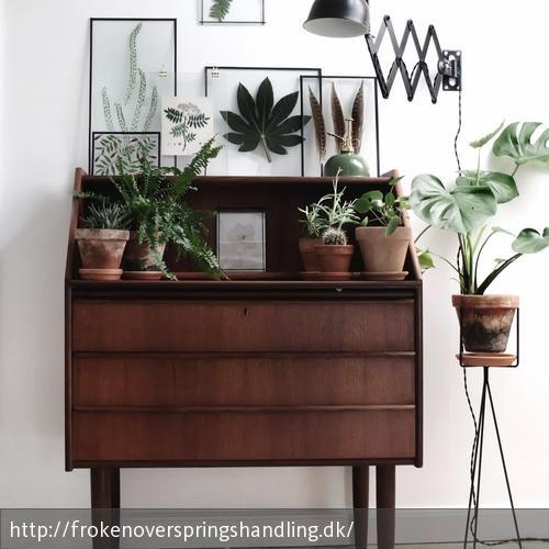DIY Transparente Rahmen mit Pflanzen von frokenoverspringshandling.dk