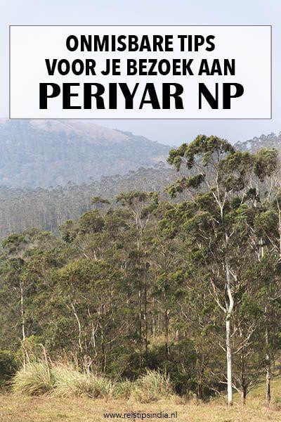 Het Periyar National Park in Kerala is een echte aanrader en er zijn verschillende mogelijkheden om dit natuurpark te verkennen. In dit artikel zet ik alle mogelijke tours en safari's op een rijtje, inclusief een aantal handige tips voor tijdens je trip.