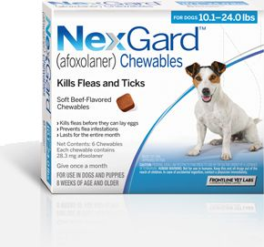 1000 Images About Flea Amp Tick Prevention On Pinterest