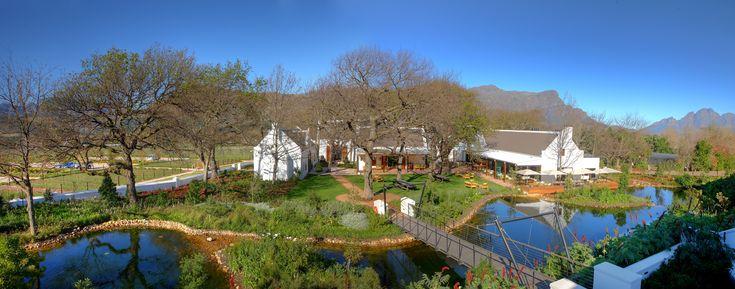 La Motte courtyard overview. #lamotte #courtyard #outdoors #franschhoek