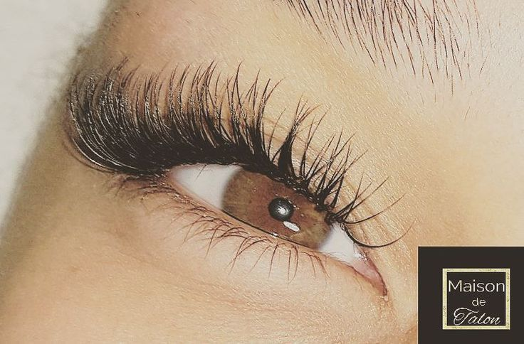 Lashes by Talon ��Call or Text for Prices and Bookings ��Maison de Talon�� ��All ladies beauty salon�� (647)988-4433  SERVICES: ��Eyelash Extensions ��Hair Extensions ��Facial Treatments ��Microdermabrasion ��Full Body Microdermabrasion ��MUA ⚫BY APPOINTMENT ONLY⚫  #luxury #lashextensions #instaday #skin #bridestory #instadaily #lashtrainer #beauty #eyelashextensions  #skincare #lovelash #modern #weddingmakeup #love #lashheaven #fashionblogger #lady #classylook #lash #lashes #permanentmakeup…