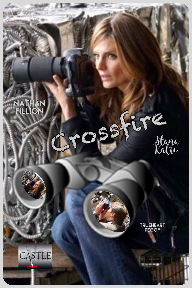 CROSSFIRE: Stakeout. Season 8 ~Castle Series Finale