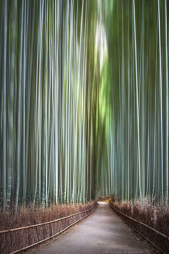 Arashiyama, Kyoto, Japan                                                       …