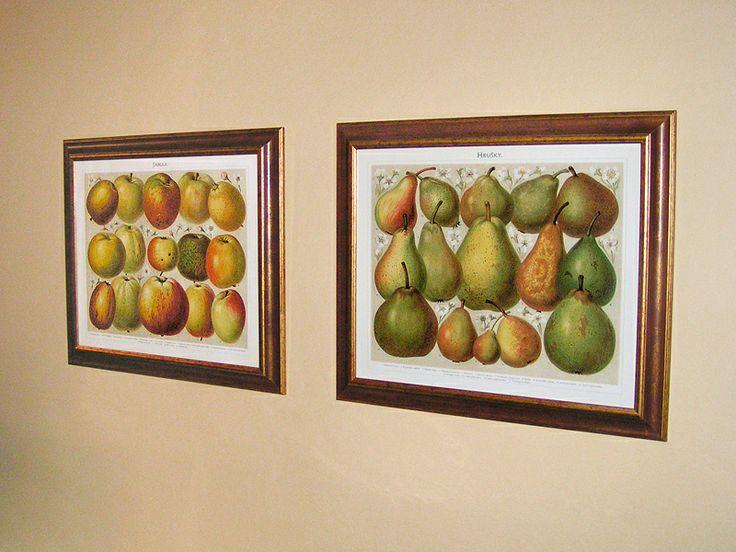 Obrazy hrušek a jablek