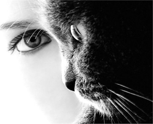 Stunning photography.