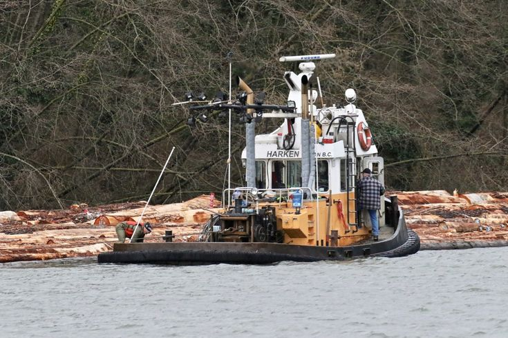"""Harken Towing's tugboat """"Harken 6"""" attaching a log boom at Poplar Island in the Fraser River. Click image to enlarge."""