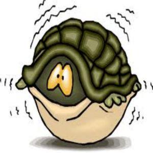 Psihologia si biologia panicii  Atacurile de panica (Ce este Panica?), elementul cheie in Tulburarea de panica pot fi vazute ca un amestec de reactii biologice, emotionale si psihologice. Raspunsul emotional este frica pura. Mai jos, sunt descrise reactiile biologice si psihologice. Atac de Panica