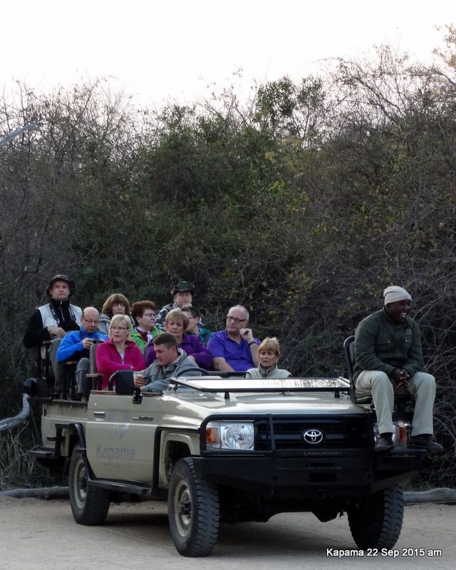 Open-top trucks leave at 6:30am and at 4:30pm for three hour game drives. The ranger drives and the tracker sits on a small perch above the front left headlight, a dangerously exposed position.