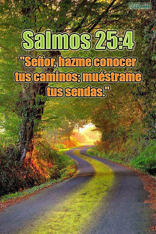 "- Salmos 25:4 - ""Señor, hazme conocer tus caminos; muéstrame tus sendas."""