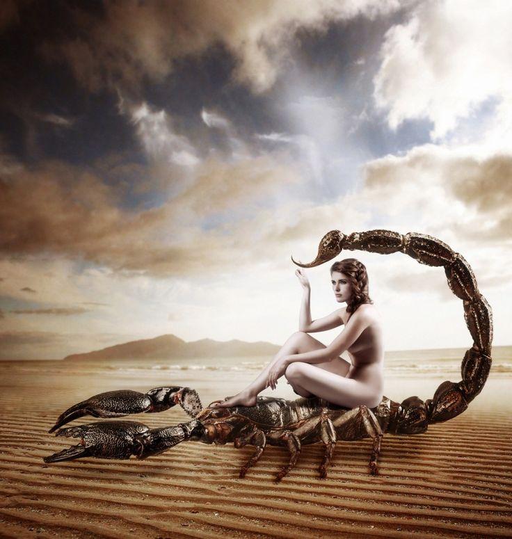 das jahreshoroskop 2019 f r das sternzeichen skorpion anderes pinterest horoskop. Black Bedroom Furniture Sets. Home Design Ideas