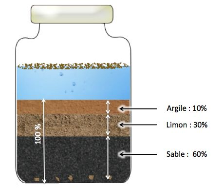 Voici une méthode simple d'analyse de la texture du sol.  Récolter trois échantillons de sol à différents emplacements du jardin dans les premiers centimètres du sol, juste sous la couche d'herbe. Remplir à moitié un bocal (transparent) par emplacement. Plus les bocaux sont hauts, meilleur sera le résultat visuel. Compléter avec de l'eau en laissant un peu d'air afin de pouvoir secouer le bocal une fois fermé. Fermer et secouer vivement, afin de bien séparer les matières entre elles…