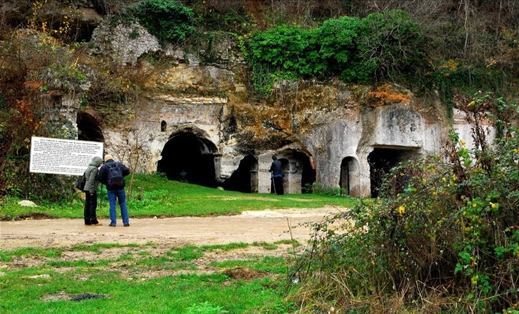 Aya Nikola Manastırı,Türkiye'de Kırklareli ilindeki Kıyıköy,Vize kasabasında bulunan dünyanın en eski taş oyma manastırlarından biridir.6. yüzyıldaki Jüstinyen dönemine (M.S. 527-565) ait olup, kaya manastırlarının en iyi örneklerindendir.  19. yüzyılda önüne ahşap bir mekân ilave edilmiş ise de bu bölümden günümüze herhangi bir kalıntı ulaşmamıştır.Kayalara oyulmak sureti ile oluşturulan manastırın zemin katı kilise, daha aşağıda bulunan bodrum katı ise ayazmadır.