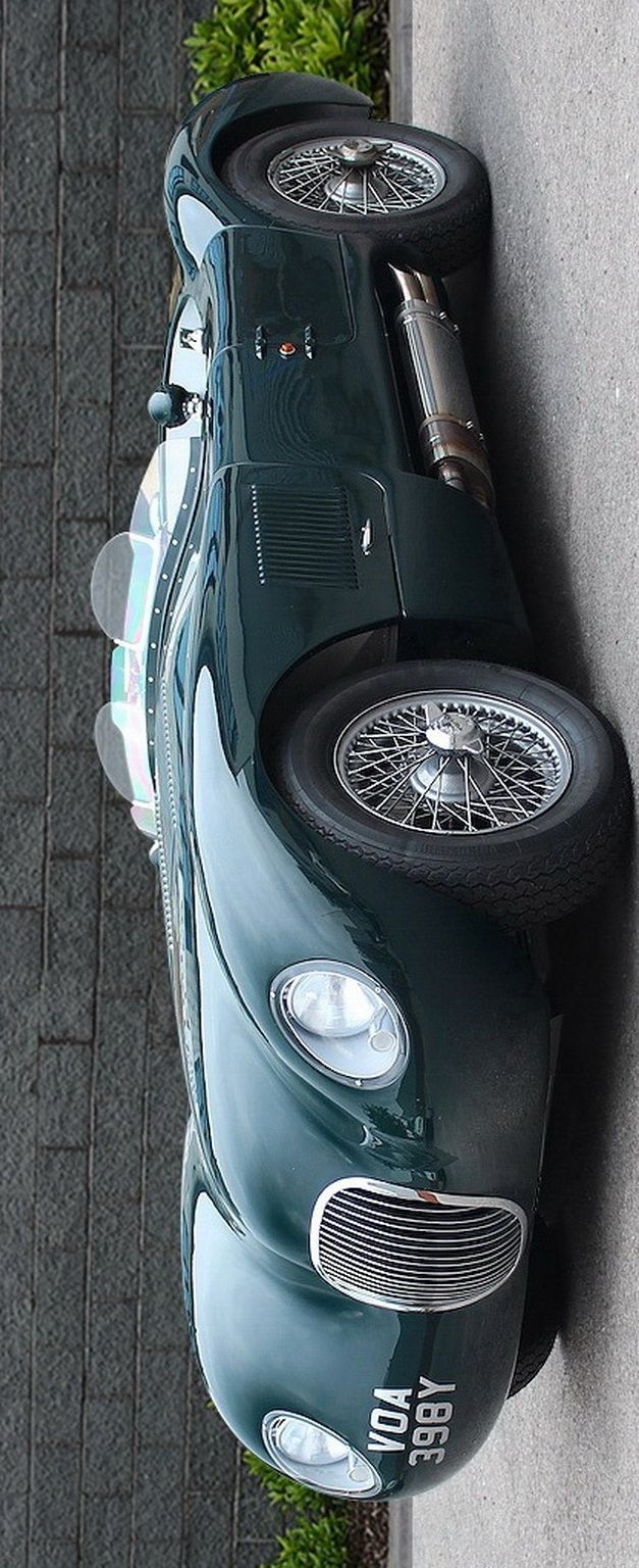 Jaguar C-type Recreation RHD 1951_1-2