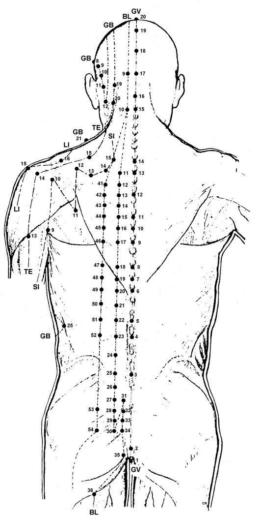 Best 25+ Acupuncture points chart ideas on Pinterest