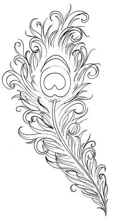 Peacock+Feather+Drawing | Peacock Feather Tattoo by ~Metacharis on deviantART