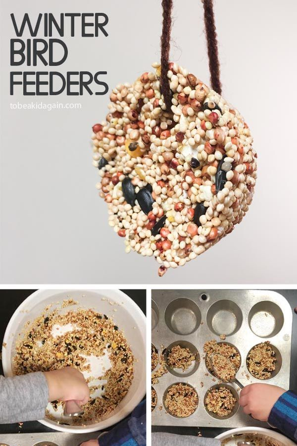 "I've been wanting to make these ""birdseed cookies"" for a long time. They make the perfect DIY Winter Bird Feeder to help our feathered friends though the cold months.  So this is a great activity to do together as an act of kindness, which is the theme for this week! For more on the theme and the..."