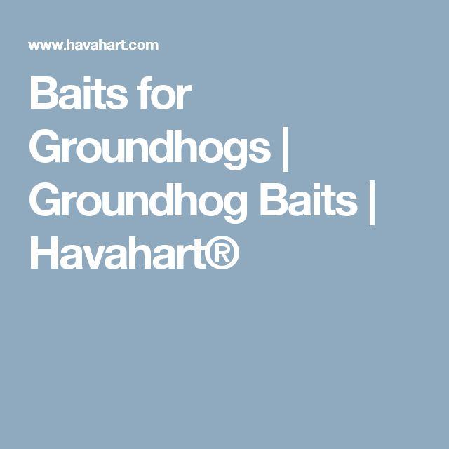Baits for Groundhogs | Groundhog Baits | Havahart®