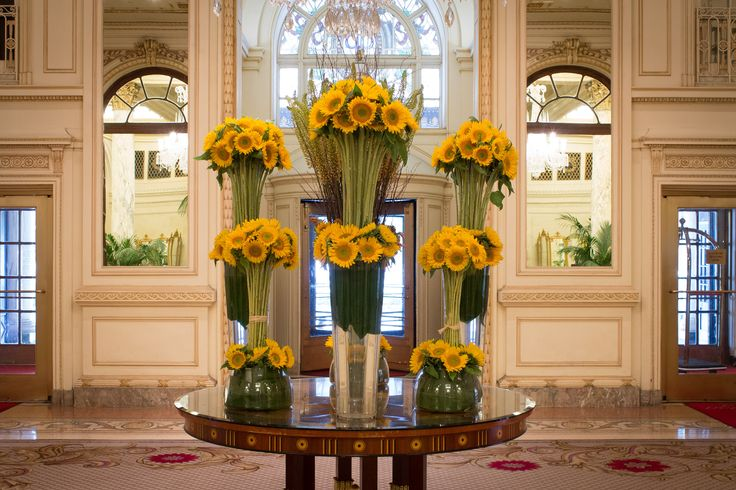 Stop by the Plaza Hotel's Lobby and see our beautiful Sunflowers!!!