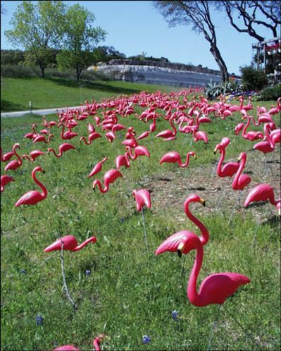 What's Wrong with a Plastic Pink Flamingo?