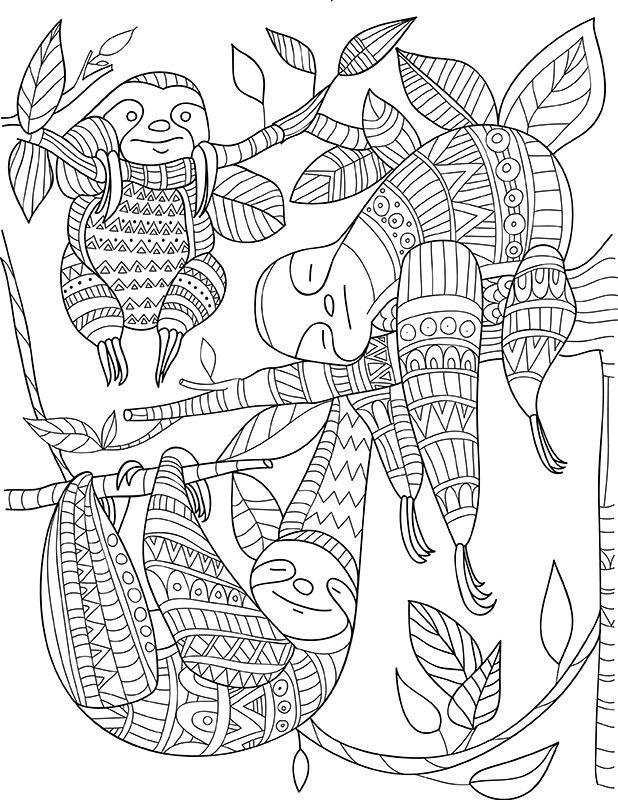 Book Animals Kingdom Mindfulness Coloring Animal