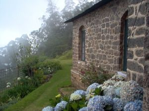 Kodaikanal - A place where you would wish to spend the rest of your life…