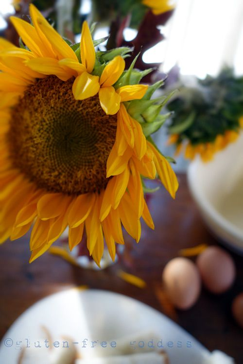 Gluten-Free Goddess Recipes: Gluten-Free Baking Tips + Substitutions