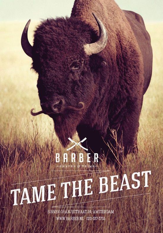 Barber tame the beast