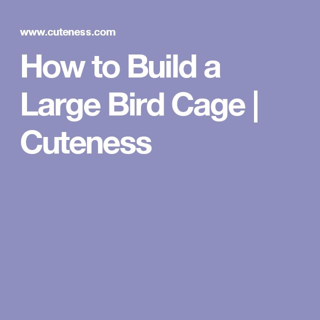 How to Build a Large Bird Cage | Cuteness