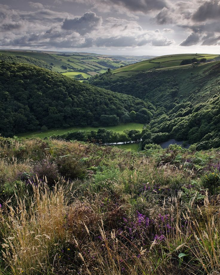 Exmoor, Somerset, England by Sean Lewis LFPhoto