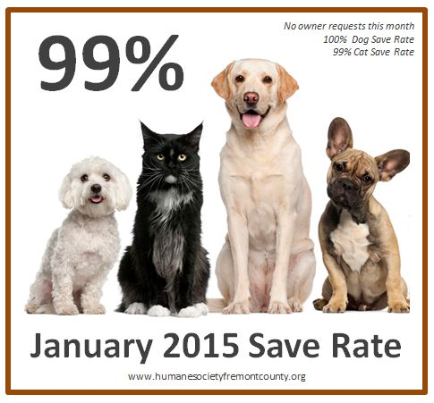 In January we were able to maintain a 99% save rate. Next month, we'll shoot for 100% again.