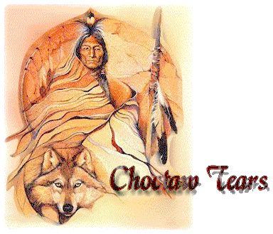 pictures of choctaw indians | disclaimer who are the choctaw the trail of tears some choctaw facts ...
