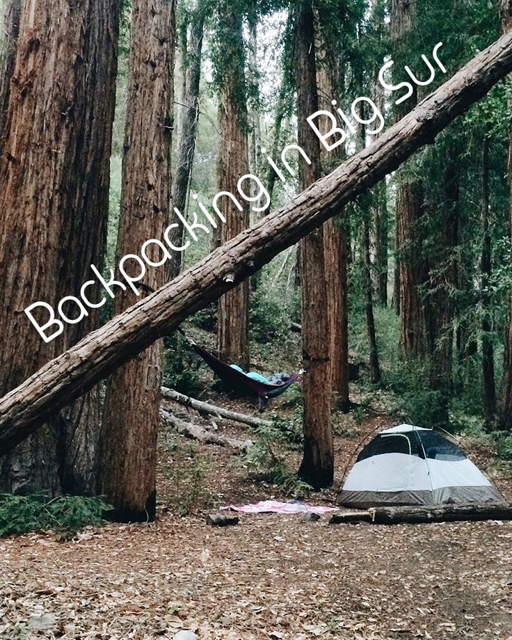 Big Sur. Home of BIG trees and BIGGER views!  Backpack the Pine Ridge Trail to the Big Sur River and Sykes Hot Springs.
