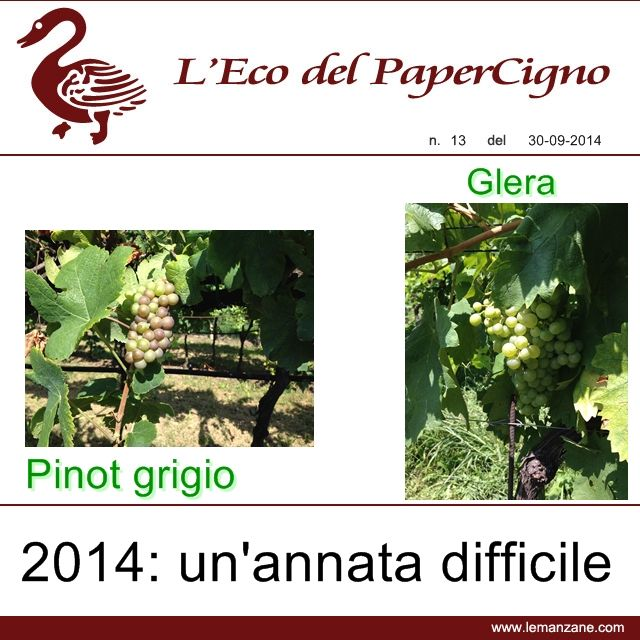 Papercigno by Le Manzane - 2014: a difficult year for grapes