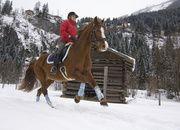Winterreiten Gastein - Winter Reiten Salzburg
