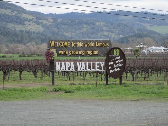 Napa Valley, CA  ナパバレーでワイナリー巡りは止められません。 ついでにSonomaもお立ち寄り下さい。