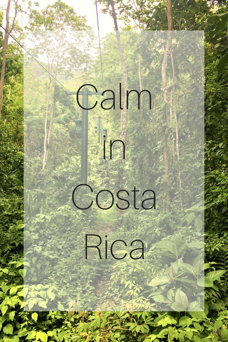 Calm in Costa Rica - We were at the Pacific Park Jaco which is around an hour away from the port of Puntarenas. Costa has the Pacific and Atlantic Ocean on either side of the country. Puntarenas is on Pacific Ocean side and we went on a tour of the tropical rainforest by aerial tram and then went on a guided nature walk.