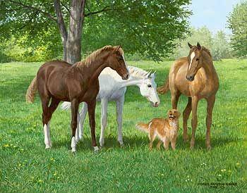 A925910081: годовалые-Лошади Картина Персис Clayton водосливов