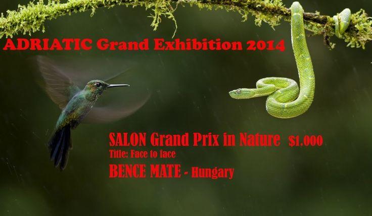 PCA Exhibitions - PCA SALON Grand Exhibition 2015