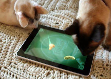 Friskies Games For Cats Ipad