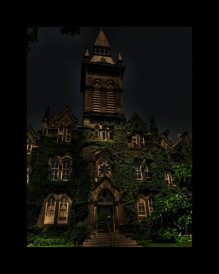 University Of Toronto by Angelique James