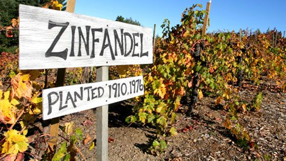 "Zinfandel has virtually become the quintessential ""American"" wine. Although actually Croatian in origins, no other country has embraced ""Zin"" as much as the US. The ability to pair Zinfandel with f..."