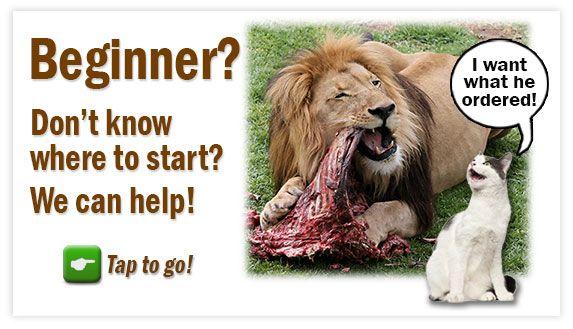 where do i start   feline nutrition raw meat diet cats are obligate