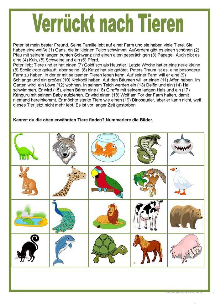 205 besten Животные Bilder auf Pinterest | Arbeitsblätter ...