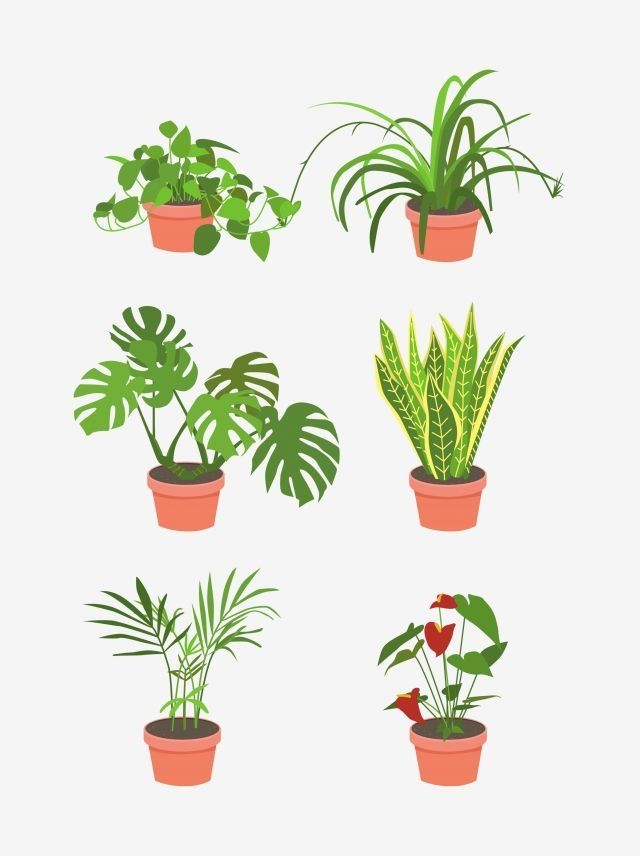 Pin By Juli Moraga On Stickers Plant Drawing Watercolor Plants Plants