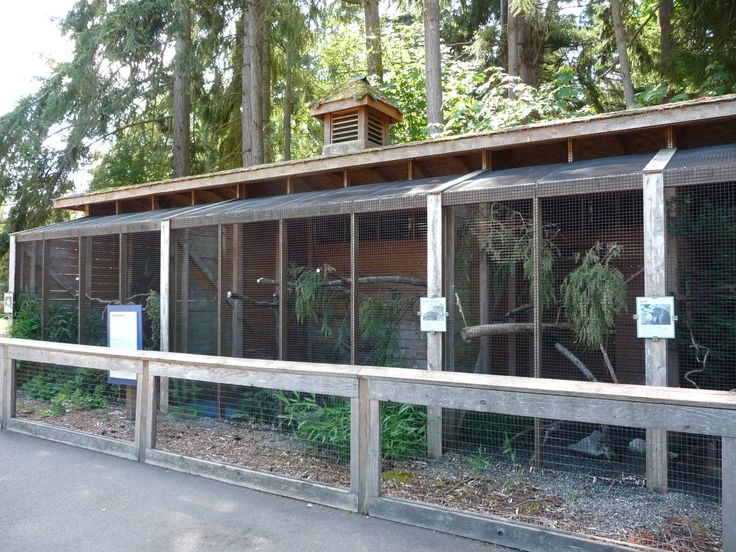 70 Best Images About Aviaries On Pinterest Geodesic Dome Parks And Boats