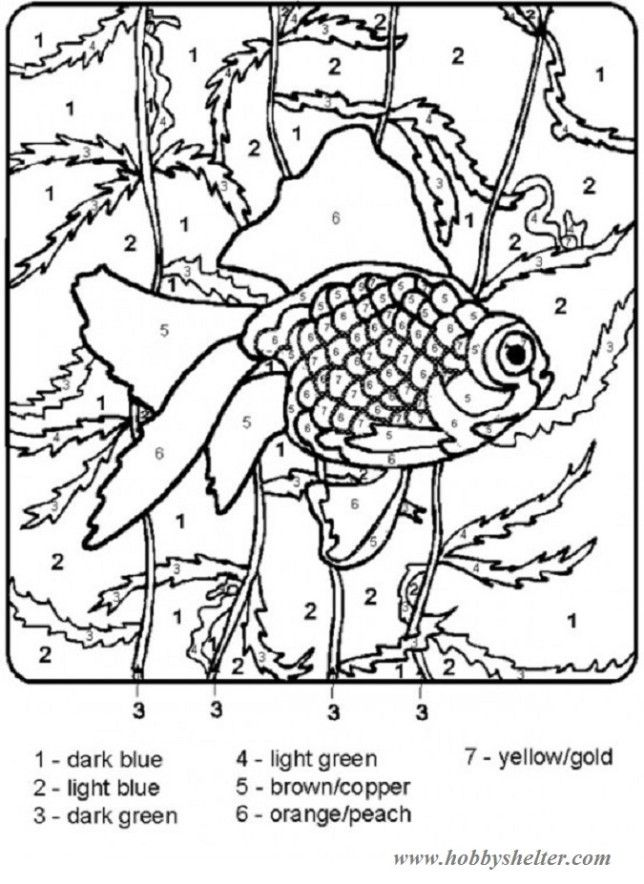 49 best Coloring images on Pinterest  Coloring pages Coloring