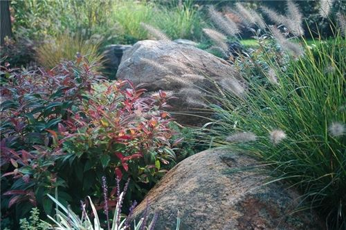 The muted tones and simple beauty of boulders and foliage interest is emphasized in a country setting. Design by Barry Block Landscape Design & Contracting in East Moriches, NY. Get the scoop on how to design a landscape in a rustic farmhouse setting: http://www.landscapingnetwork.com/garden-styles/farmhouse.html