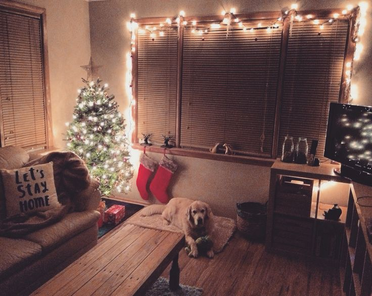 Christmas in our first home ❤️